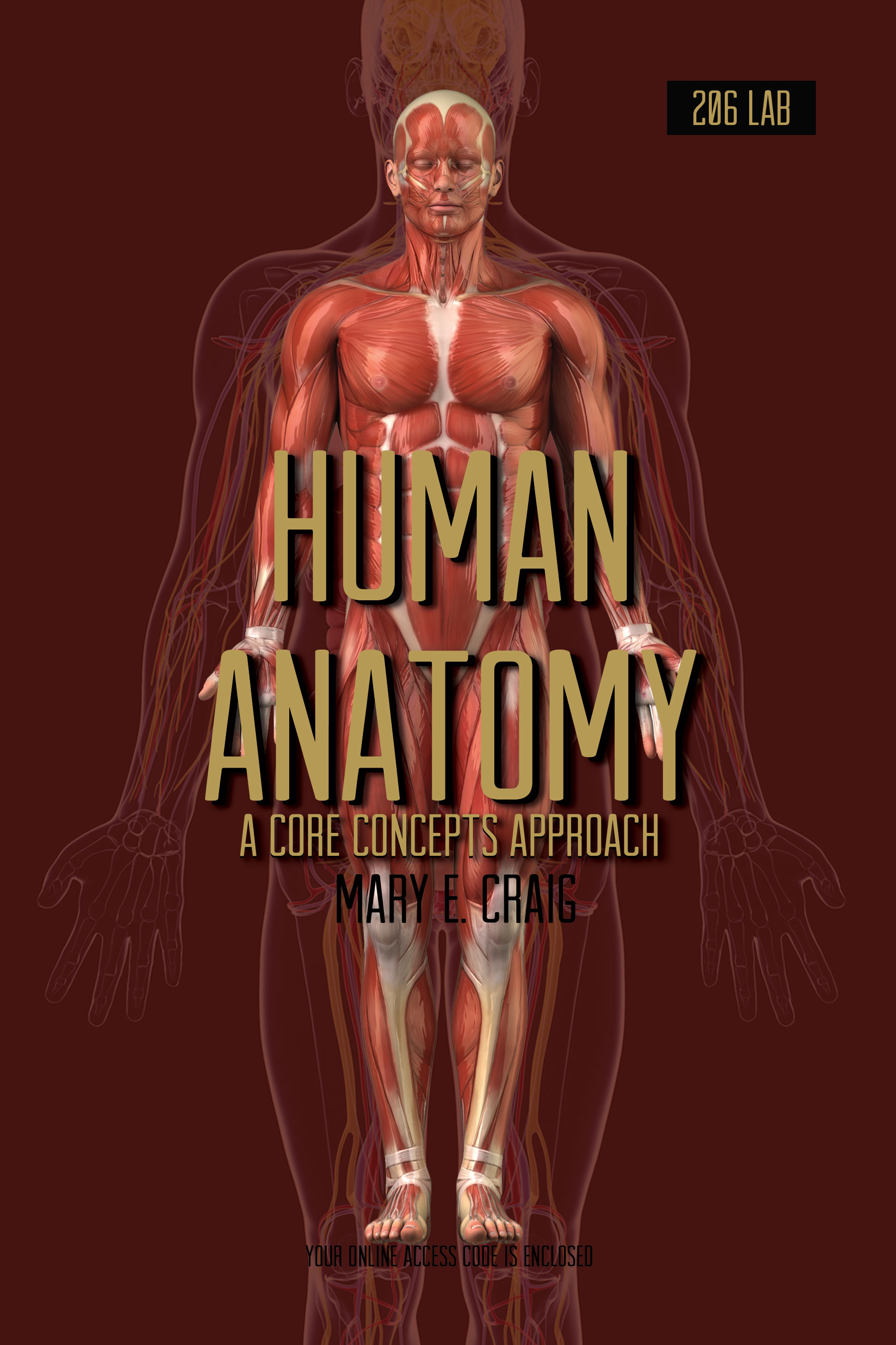Product Details - Human Anatomy: A Core Concepts Approach - Lab 206 ...