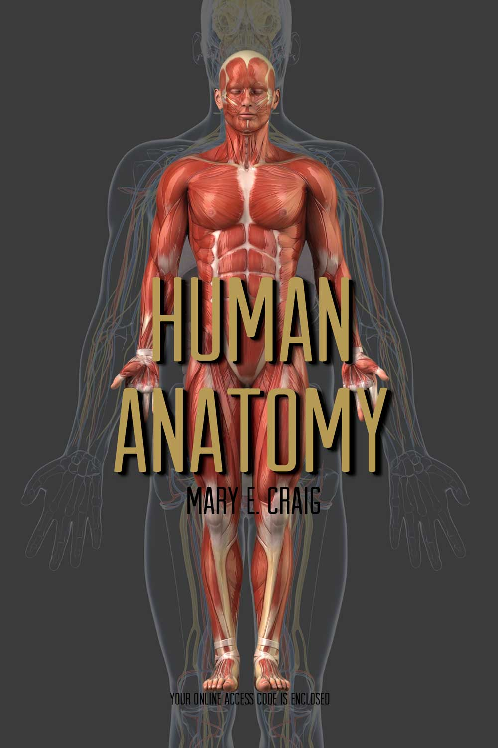 Product Details Human Anatomy A Core Concepts Approach Lecture